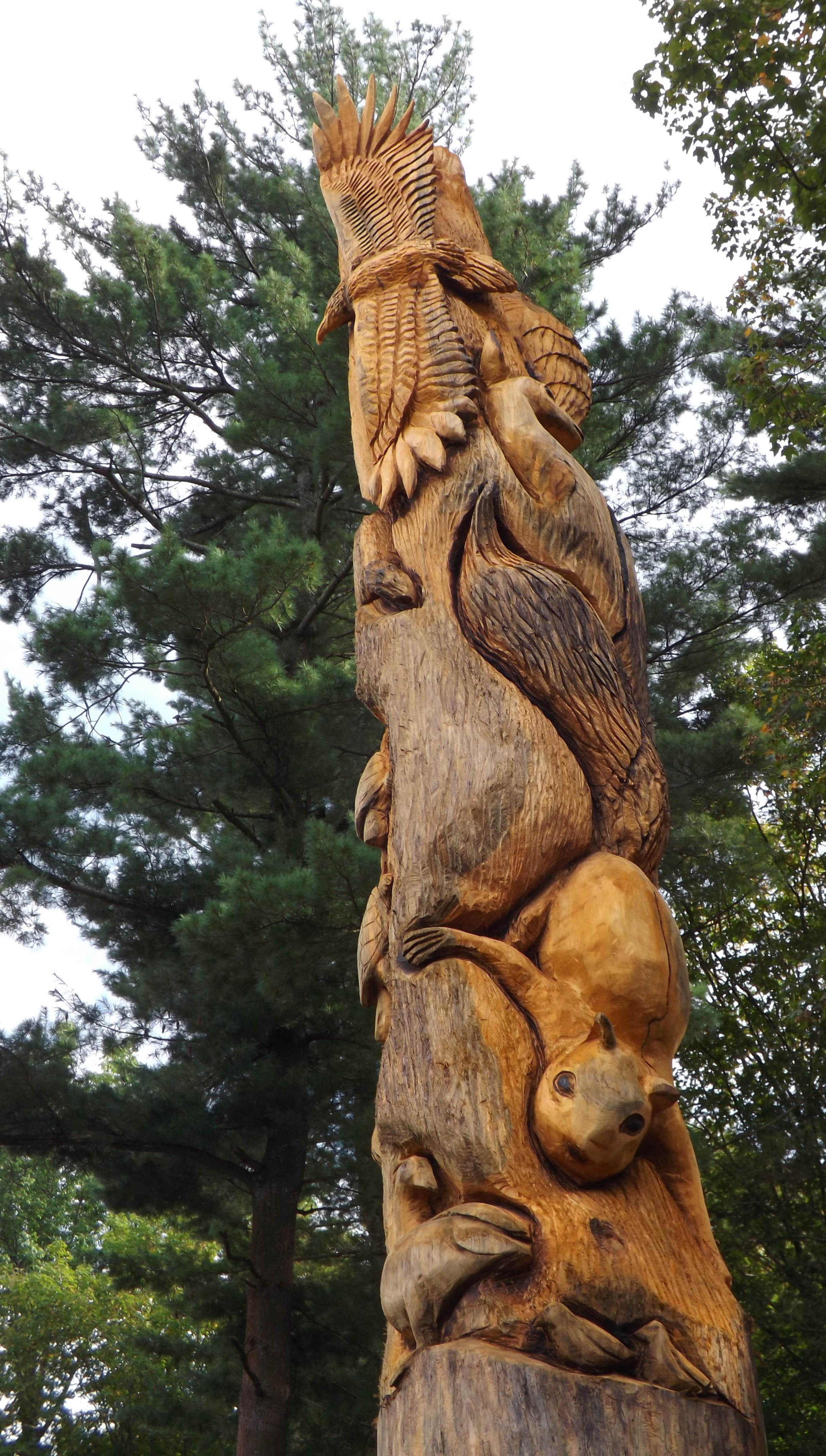 Odetah Camping Resort Native Animal Family Montage Tree