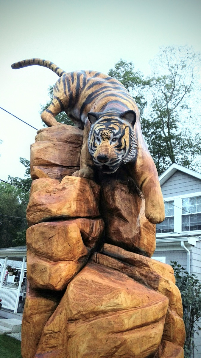 Chainsaw carving of tiger climbing down rocks time lapse
